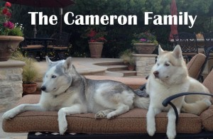 Cameron Sponsor Pic