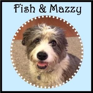 Fish & Mazzy