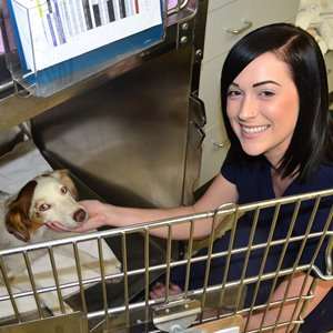 Success Story Abby and All Pets Staff