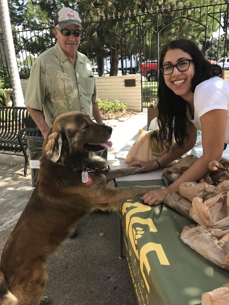 dog charities near me